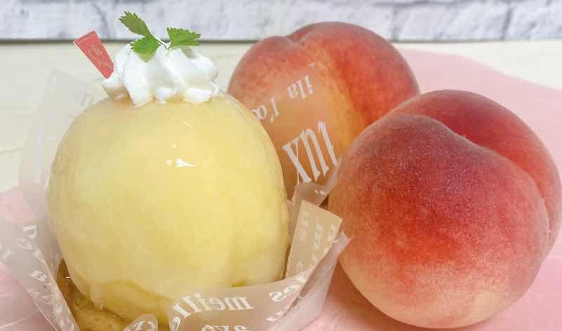 Fruits Garden 新SUN